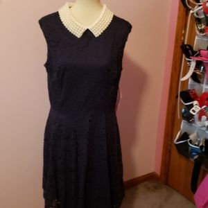Betsey Johnson NWT S 14 Fit and Flare Lace Dress
